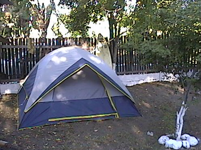 Image of Jamnesia tent